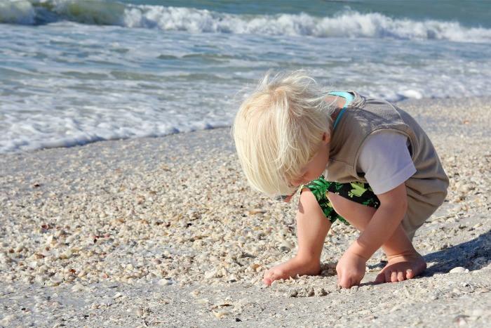 ألعاب البحر للأطفال-تجميع الصدف والقواقع