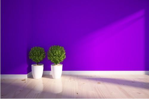 درجات اللون البنفسجي في الدهانات - البنفسجي الفاتح