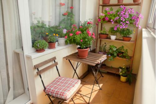 ديكور بلكونة منزل - حديقة صغيرة في البلكونة