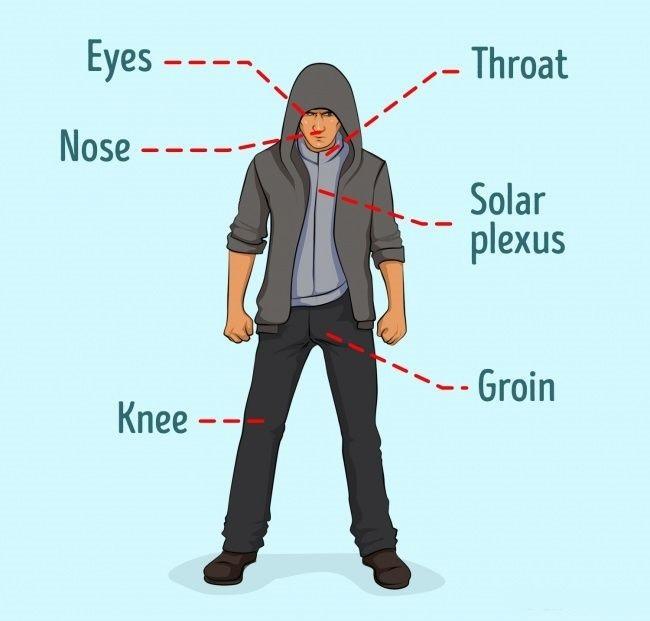 الدفاع عن النفس- نقاط الضعف في جسم الإنسان