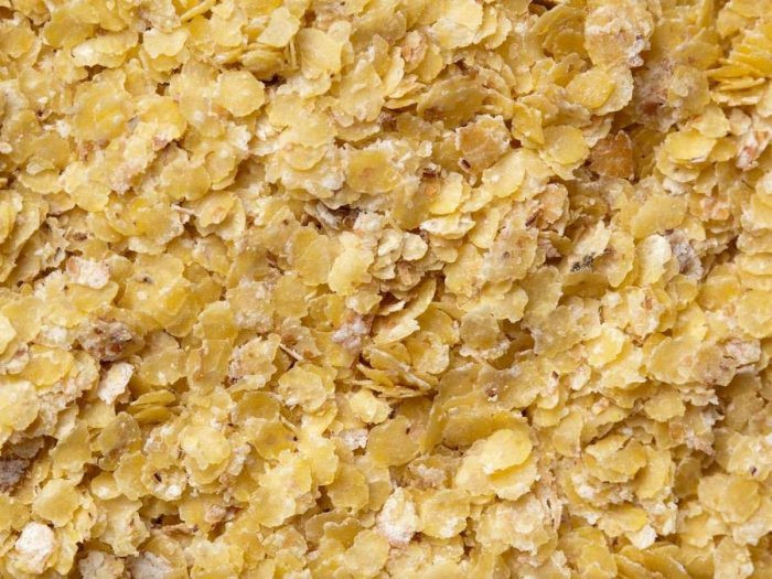 حبوب تساعد في الحفاظ على الوزن - جنين القمح