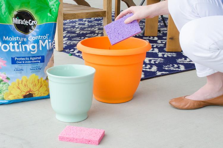 إسفنجة الأطباق - ترطيب نباتات الزينة