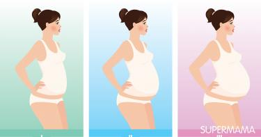 بطن الحامل