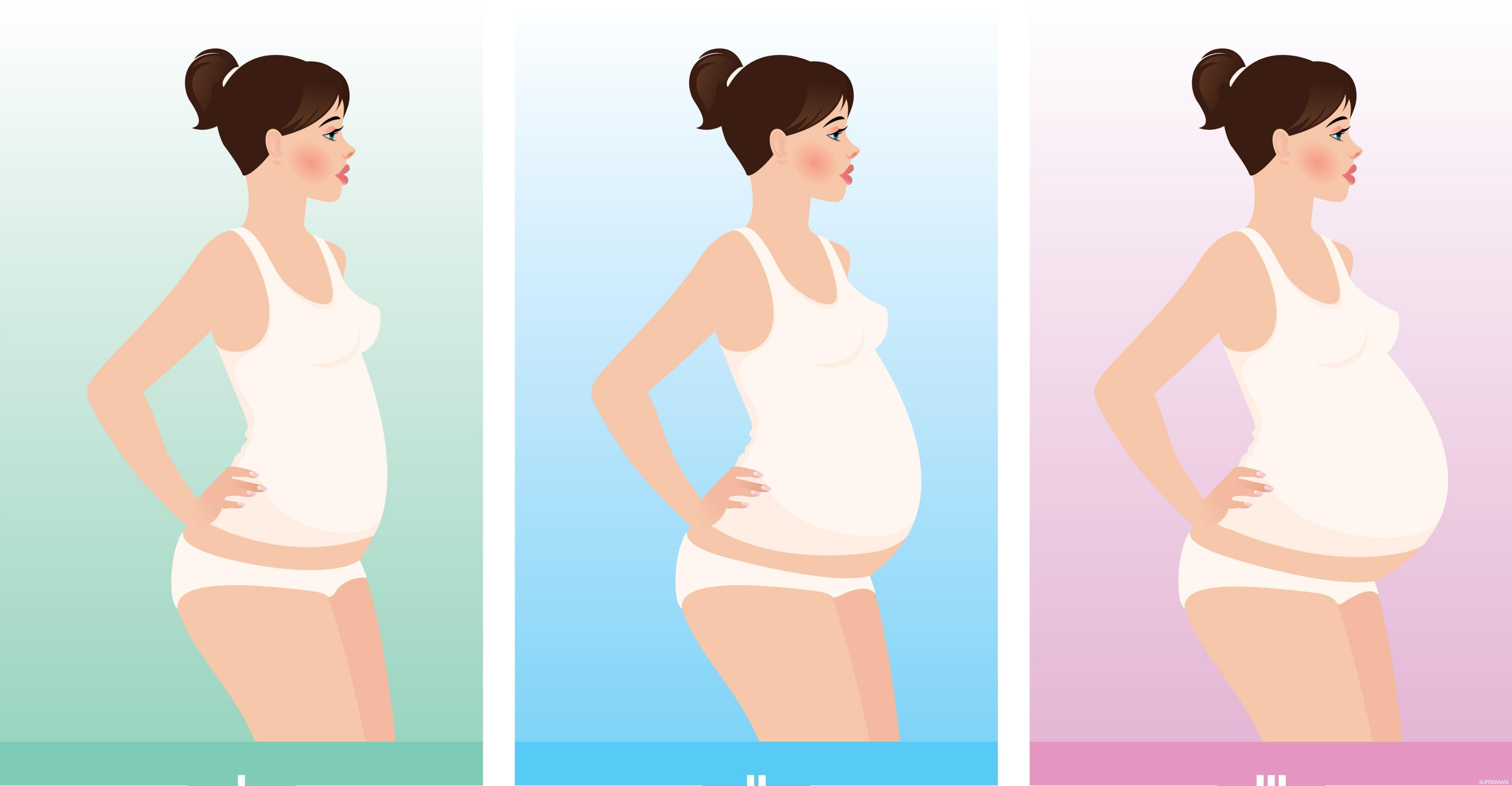 الشهر الخامس من الحمل و4 8