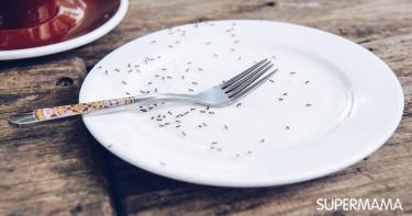 الحفاظ على الطعام من الحشرات