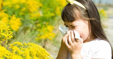 حساسية الأنف عند الأطفال