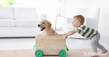 اقتناء حيوان أليف للطفل