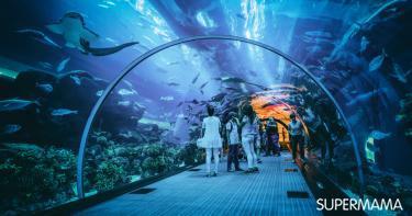 أماكن سياحية في دبي للأطفال