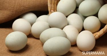 فوائد بيض البط للأطفال