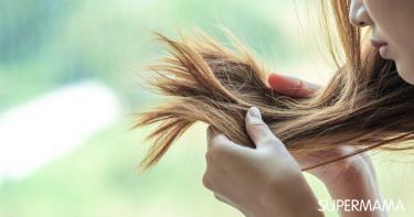 جفاف الشعر في الصيف