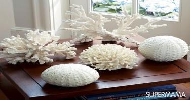 الشُعب المرجانية.