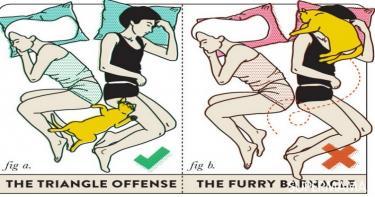 أوضاع النوم بين الزوجين3