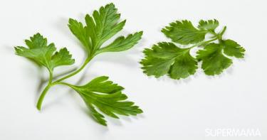 خضروات وبقوليات متشابهة 1